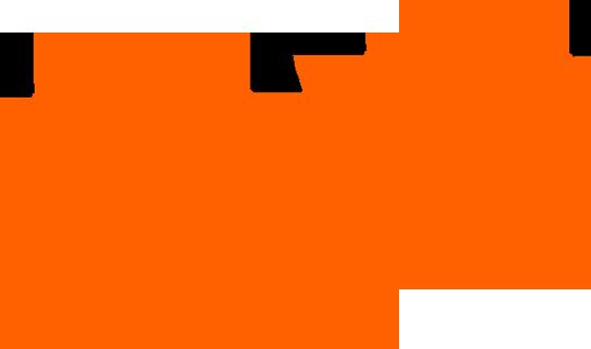 paw-tracks-hi